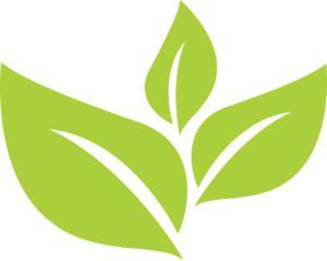 绿色Leaves_shutterstock_1543009985(转换)