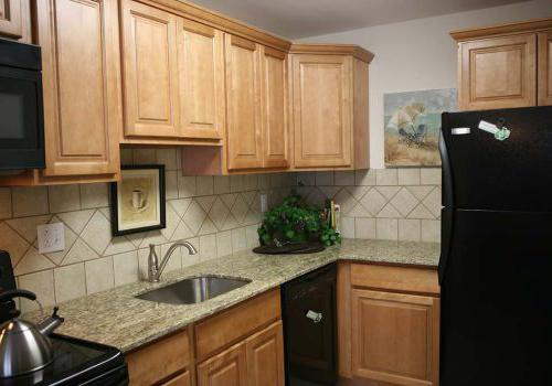 宾夕法尼亚州诺里斯敦(Norristown) 450套格林bbin出租的厨房